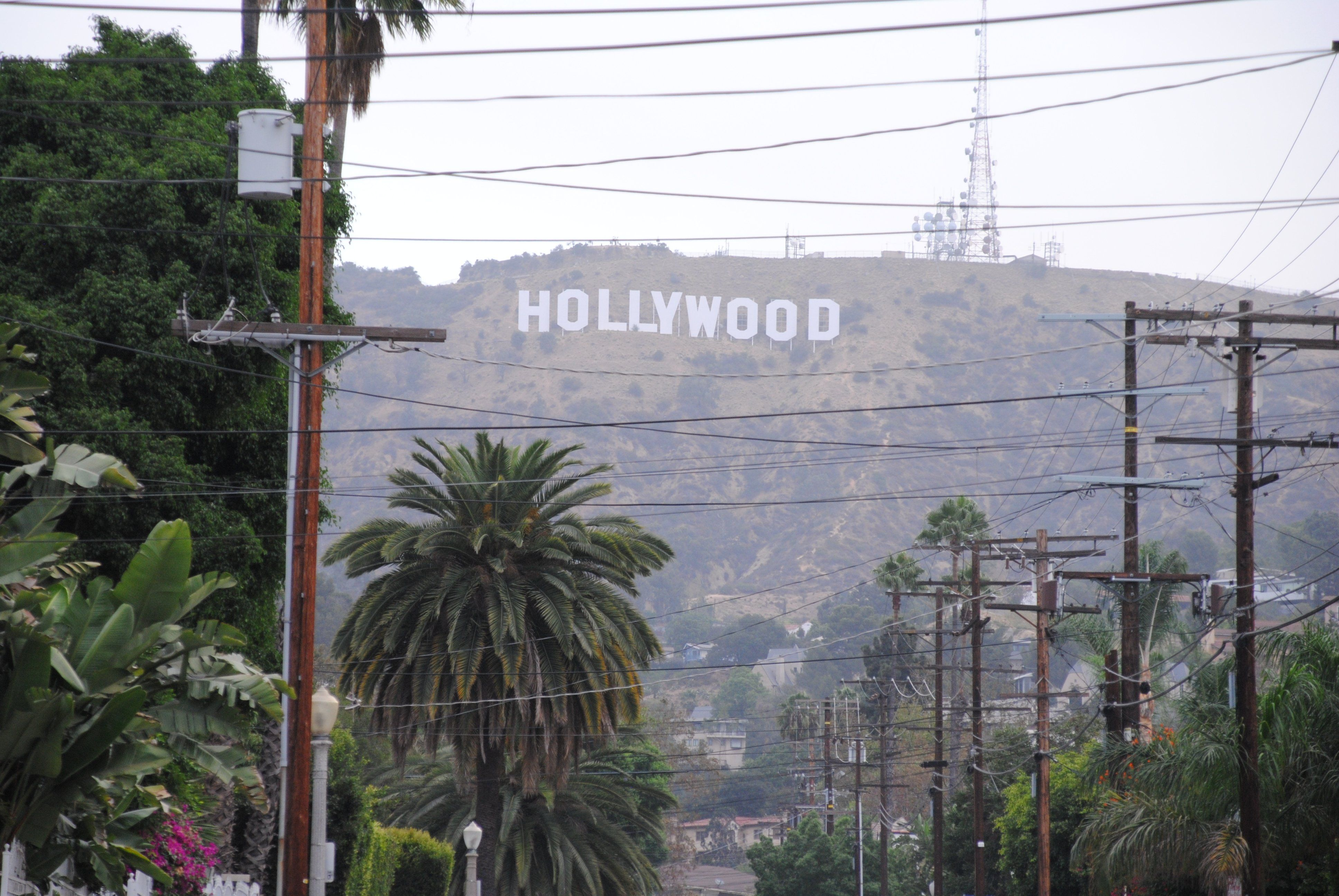 When can you start hookup on hollywood u